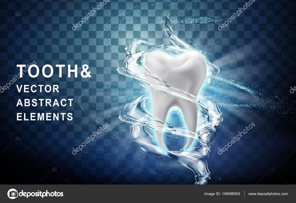 Zahn-Modell gewaschen — Stockvektor © kchungtw #149088503