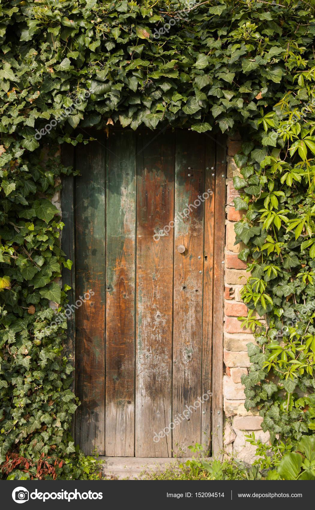 Romantique vieux bois porte de jardin en plein air, entouré ...