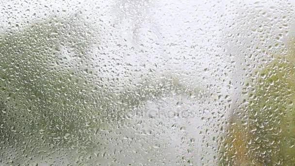 Tropický den deštivý podzim. Dešťové kapky na sklo okna domu. Zaměřit se na dešťové kapky stékající po okna, velké zelené palmového listí rozmazaným pozadím. Thajsko