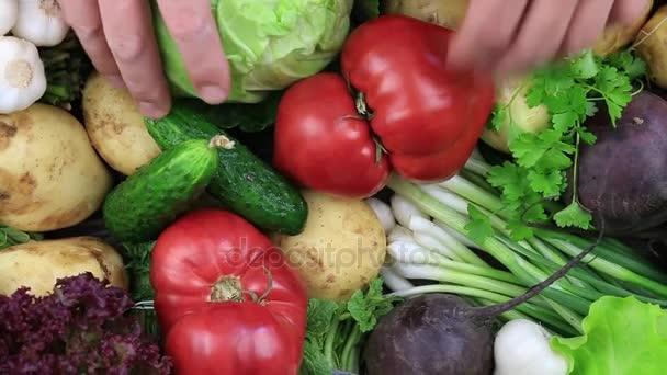 Választék a friss nyers zöldségek egy rusztikus, fából készült asztal tálcán rendezett.