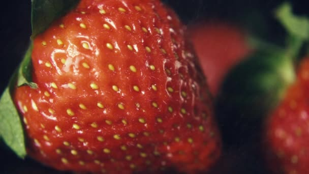 Mo. lento morango bagas sob chuva fina — Vídeo de Stock © Photosiber ... 318a10a00b2bf