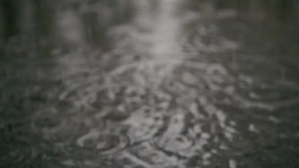 Slow motion. Raindrops in a puddle on the sidewalk