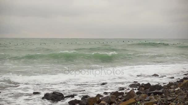 Nyáj madarak repül át a viharos tengeren alacsony lassú mo