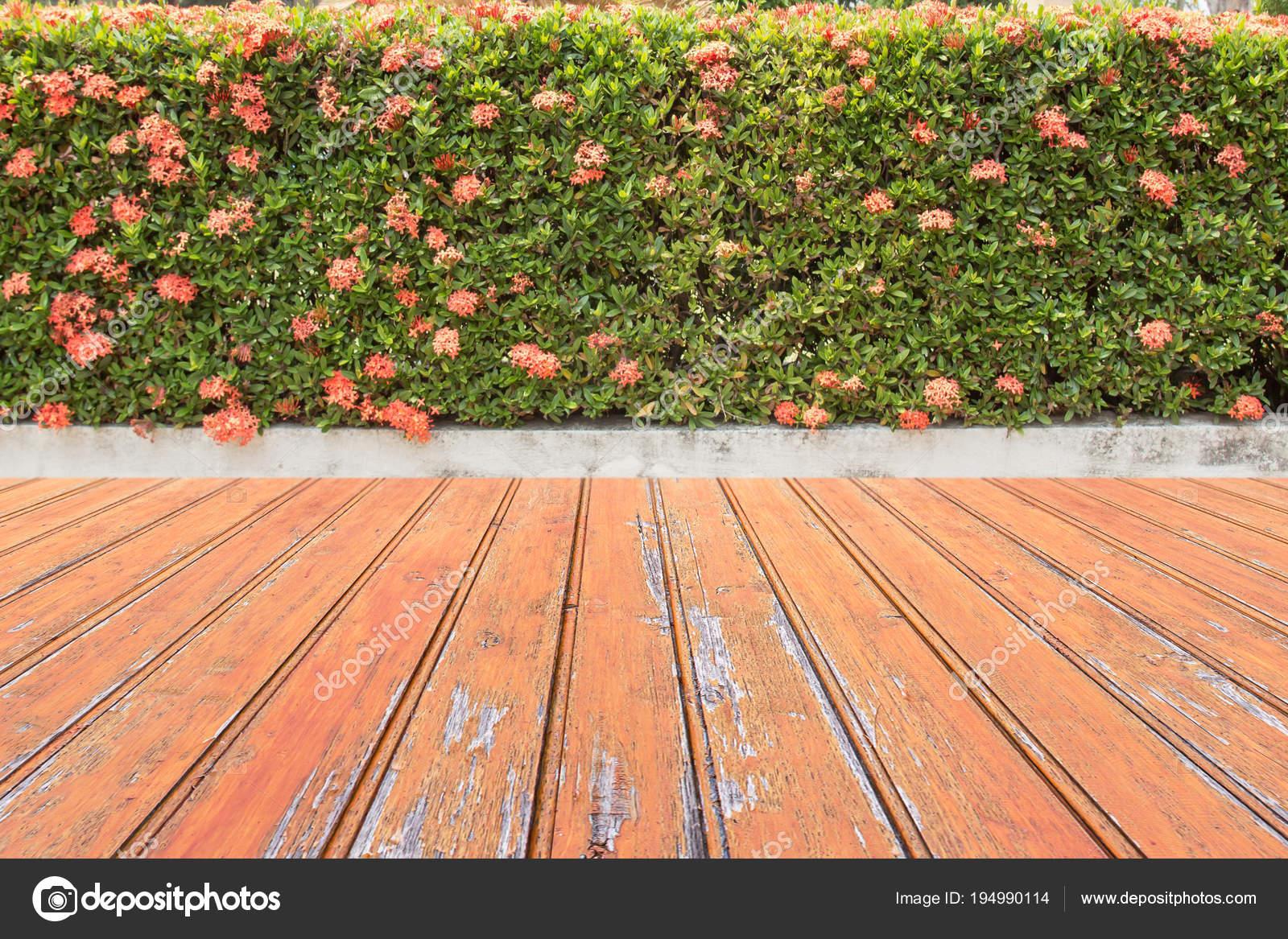Houten vloer tuin onderhoudsvriendelijke tuin mooie grote zwarte
