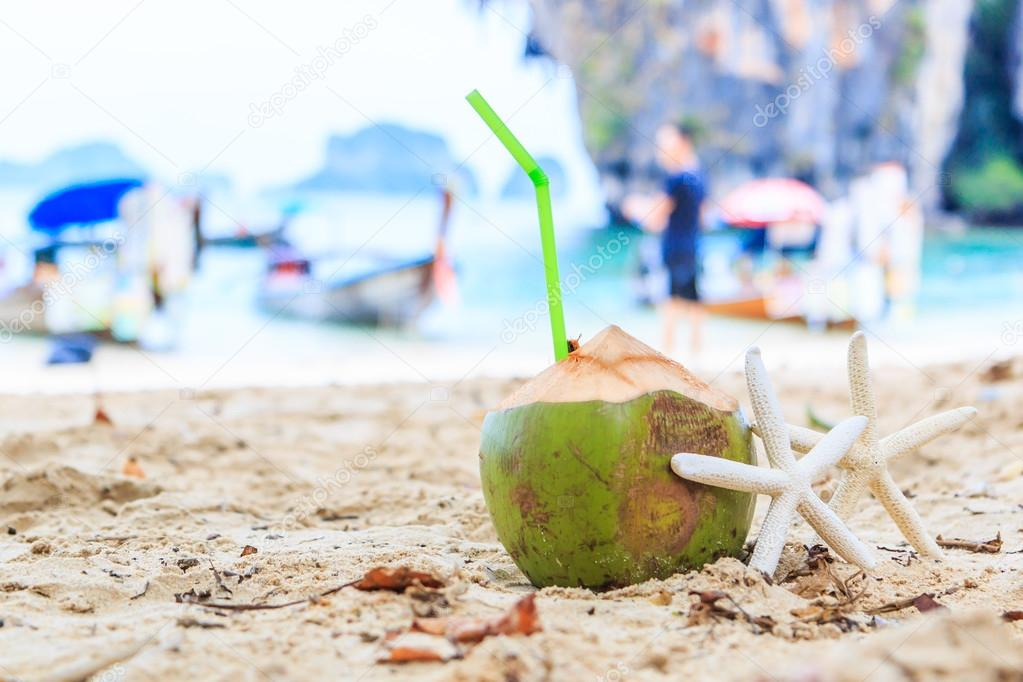 Coconut  and starfishes on sea beach