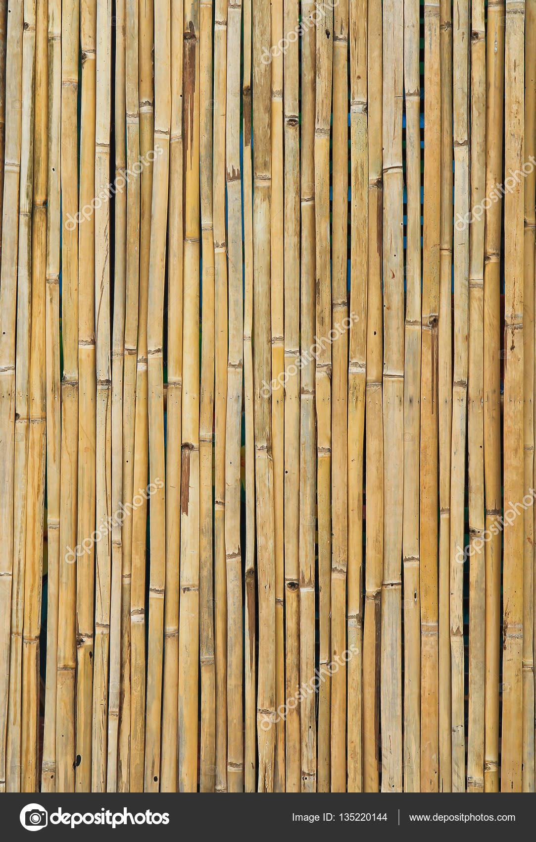 Fotos Bambu Seco Palillos De Bambu Seco Foto De Stock - Bambu-seco