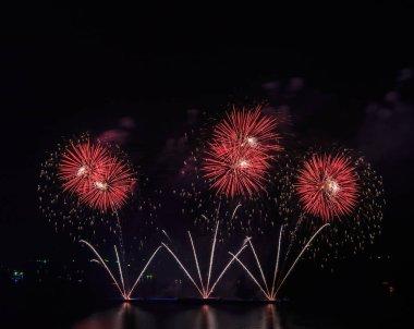 Beauty night fireworks on sky