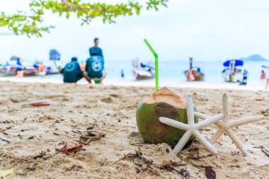 Coconut and starfishes near sea