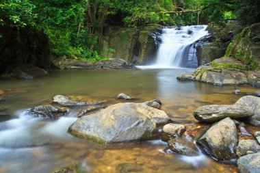 Waterfall in Forest National park
