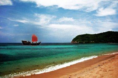 Sailfish with Scarlet sails