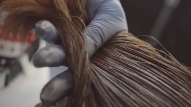 Applying Hair Dye With Brush — Stock Video © okvideo #143613553