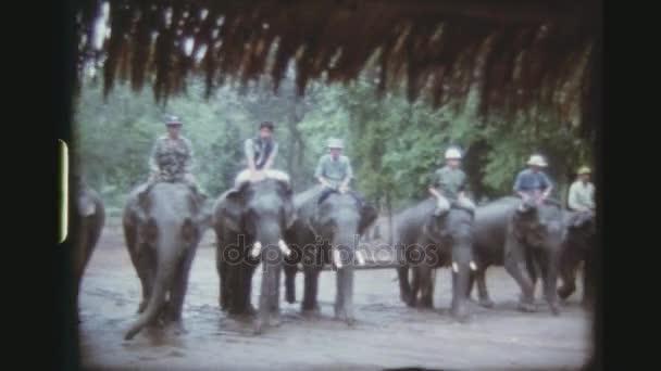 Thajsko, Chiang Mai Province, květen 1978. Čtyř zastřelených posloupnost Mahouts ukazovat své dovednosti, montáž a opouštění pracující slony, před turisty