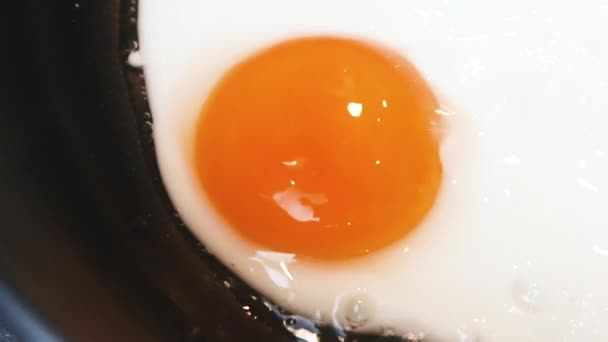 Fried egg close-up: whole yolk in focus. The concept of fried food, breakfast.