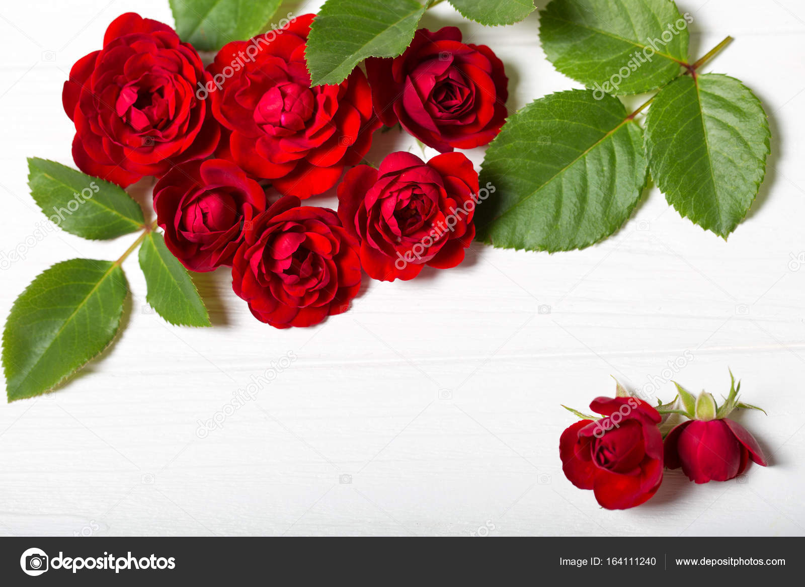 Red roses beautiful flowers on a white deoevian table empty space red roses beautiful flowers on a white deoevian table empty space for text izmirmasajfo
