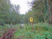 Természetvédelmi terület-a Uckermark