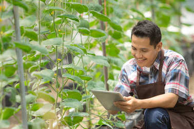 Farmer man with tablet smiling