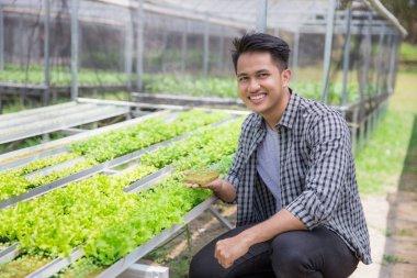 Farmer holding small green plant