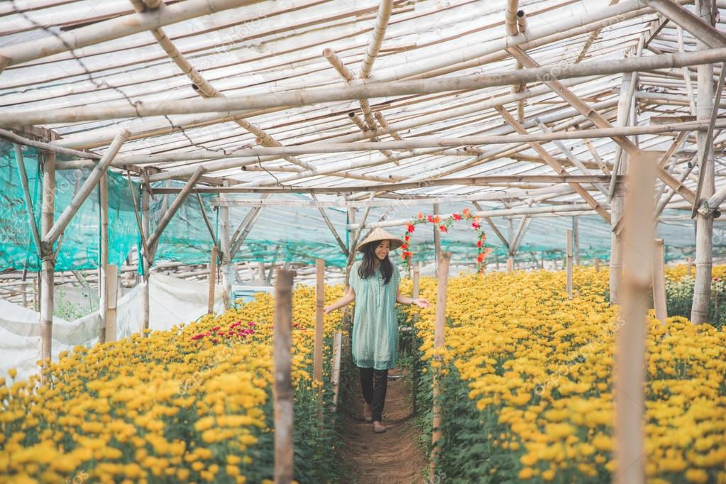 woman walking in between chamomile flower in the farm