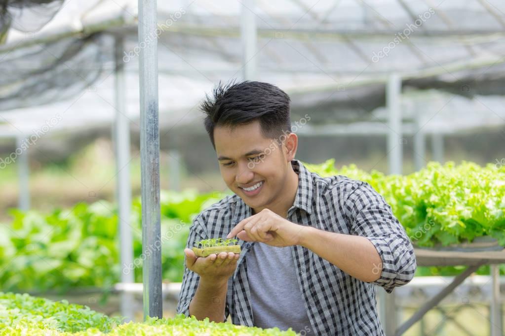 male farmer in the green house farm