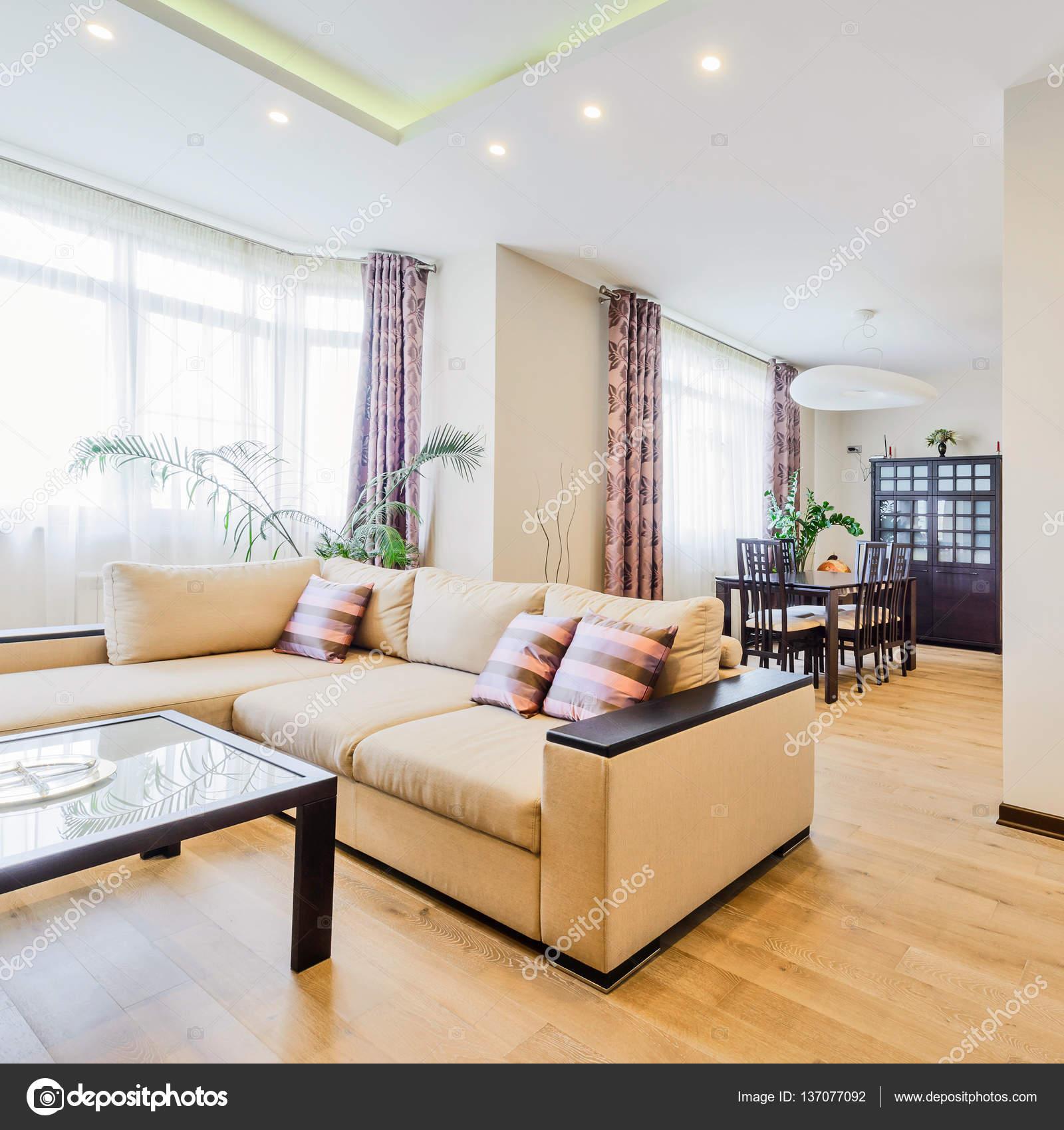 Het interieur van een mooie woonkamer met moderne meubels in heldere ...