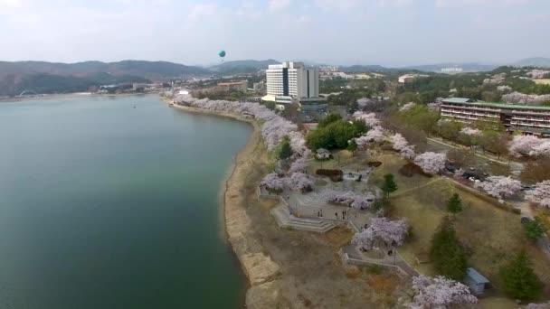 Hot Un Stock >> Hot Air Ballon Bomun Park Gyeongju South Korea Asia Hot Stock