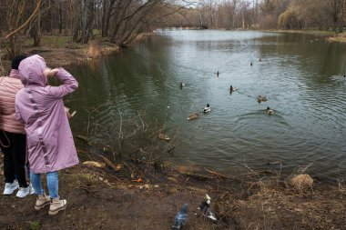 People feeding ducks early at springtime in Moscow. Unrecognizable persons.