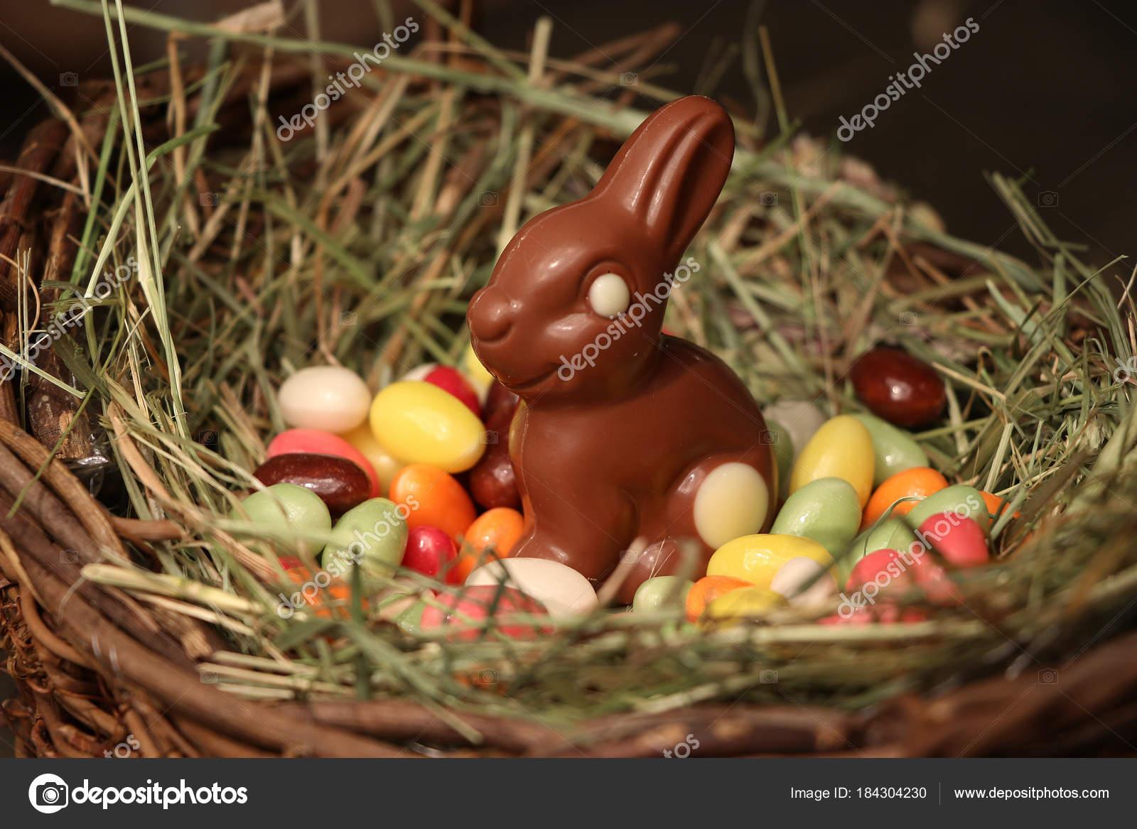 Chocolat lapin p ques dans panier photographie samueljoerg 184304230 - Chocolat de paques pas cher ...