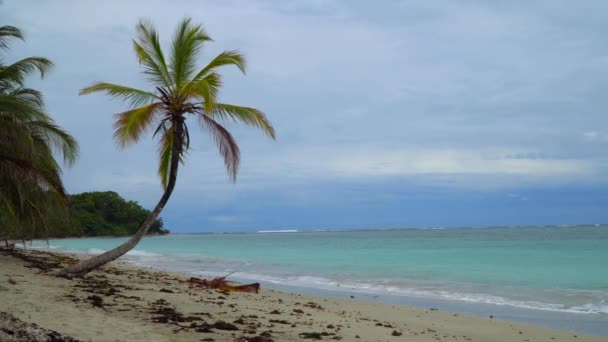 Trópusi sziget nyaralás. Egzotikus homokos strand és a pálmafa.