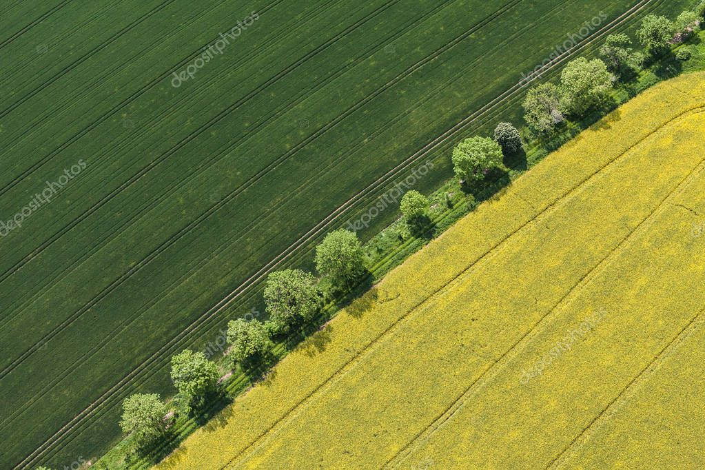 aerial view of the harvest fields