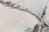 Letecký pohled na zimu polí v Polsku