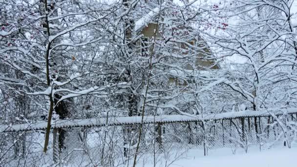 Russischer Winter. Dorfhaus zwischen Bäumen unter dem Schnee