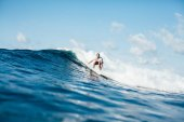 Surfování
