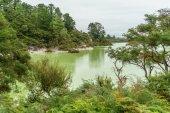 Fényképek zöld víz