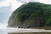 Fotografie Piha Beach