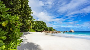 Paradise beach.White sand,turquoise water,palm trees at tropical