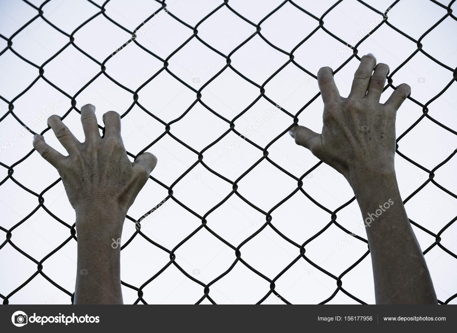 Se apoder de las manos en la valla de alambre de malla de prisin