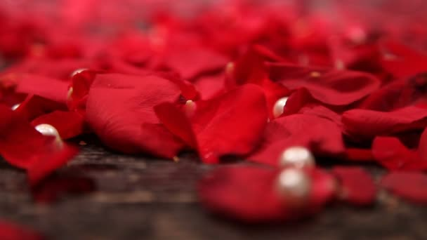 tears are falling on red rose petals