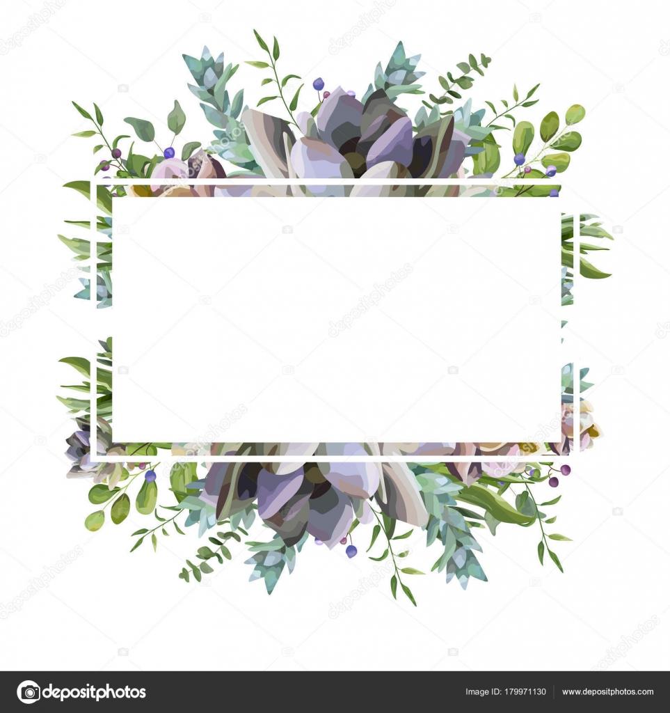 Diseño de tarjeta de vector con planta suculenta flor, acuarela de ...