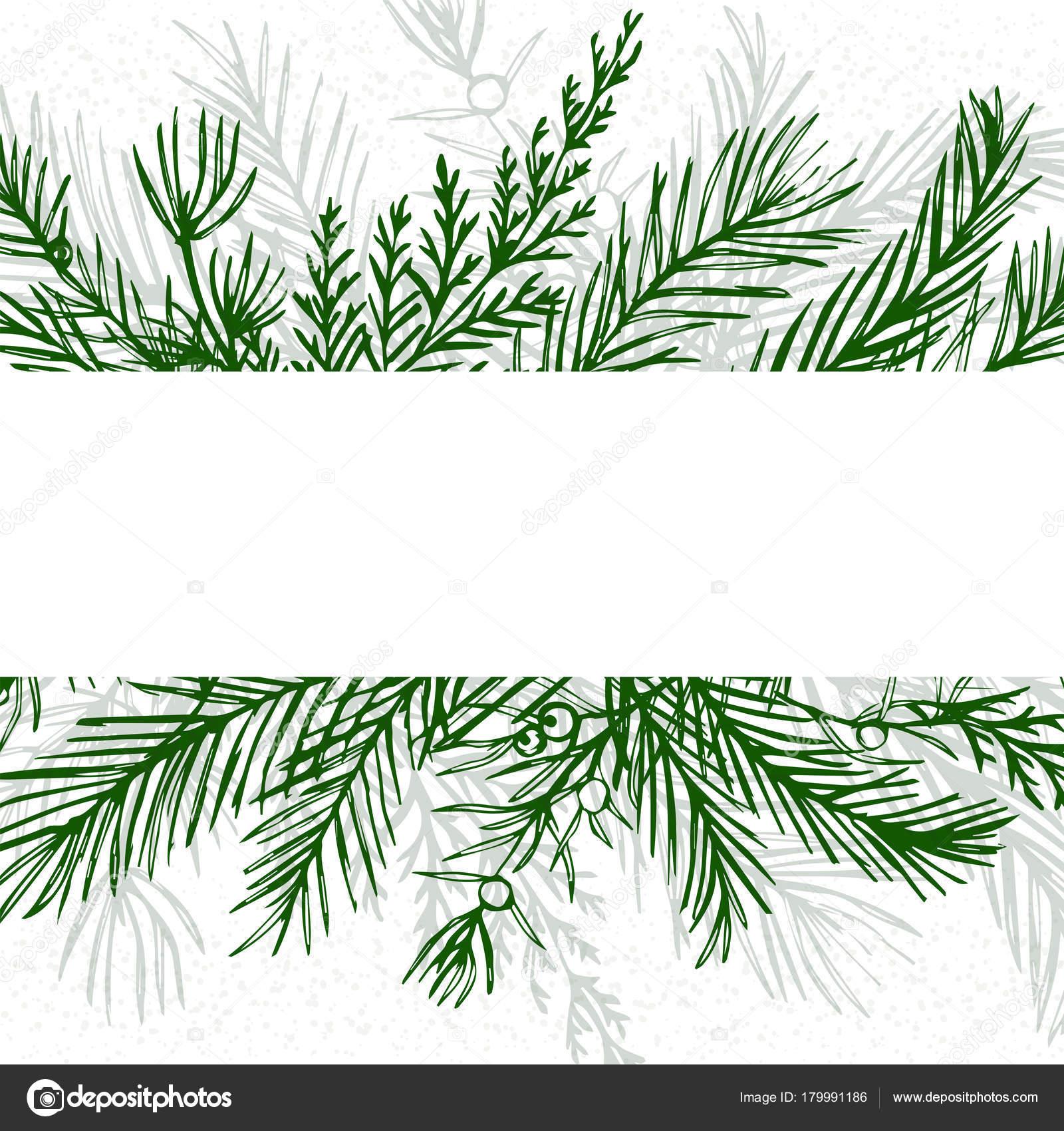 Christmas Greenery Vector.Merry Christmas Greeting Card Postcard Vector Design Hand