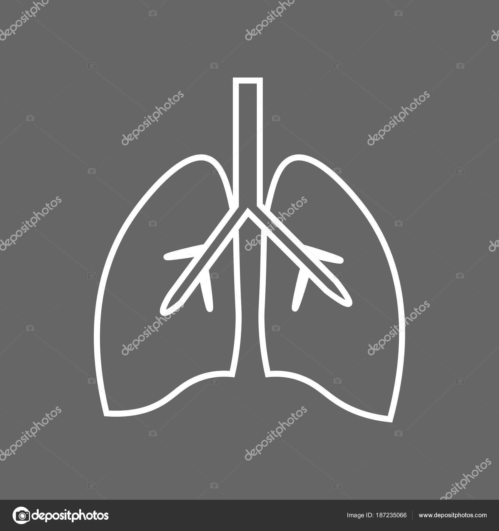 Icono de línea estilizada los pulmones anatomía — Vector de stock ...