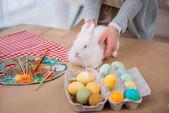 Fényképek nő a fehér nyúl, a tábla a színes húsvéti tojás
