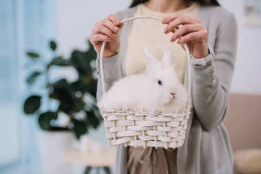 cropped shot of woman with white rabbit in basket