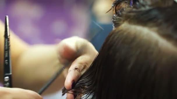 Hairdresser cutting hair with scissors