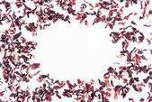 pohled shora rámu s ibišek čaj izolované na bílém