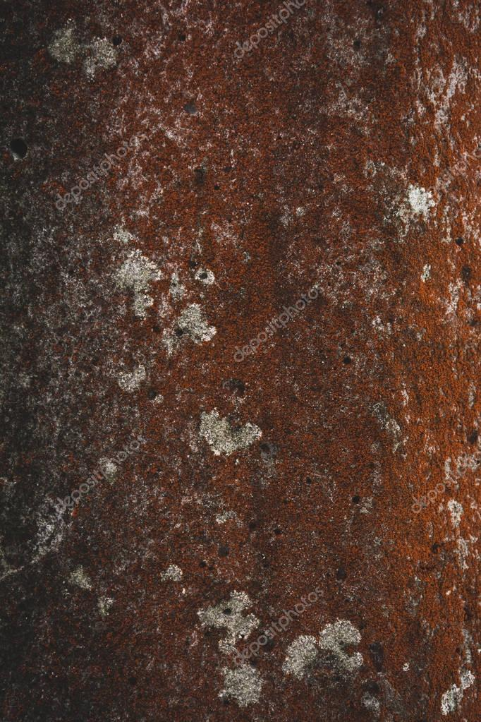 rough red tree bark background