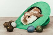 domestic rabbit lying in green hat with painted easter eggs on surface