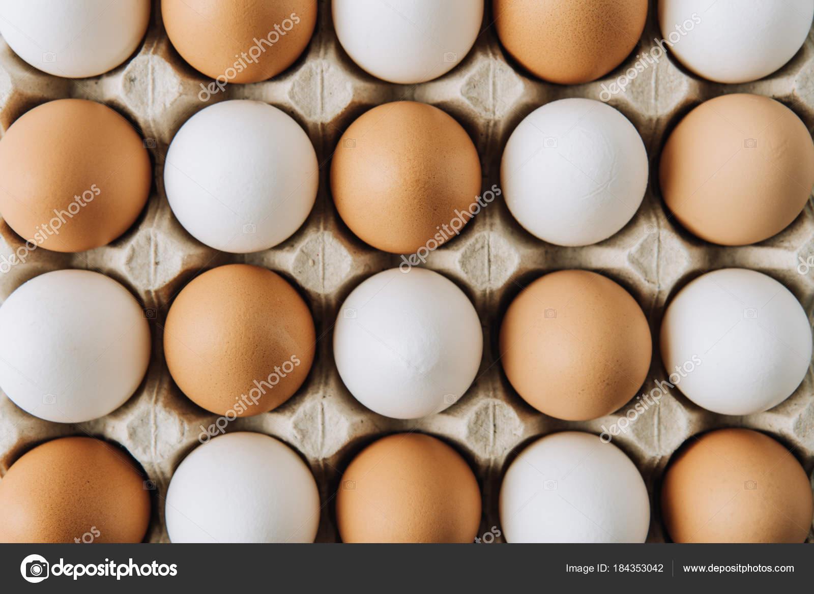 White Brown Eggs Laying Egg Carton Full