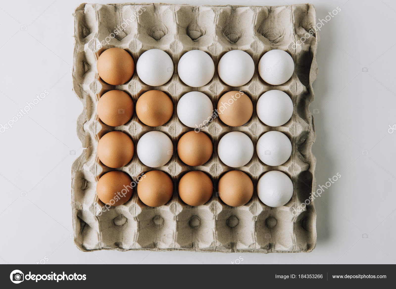 White Brown Eggs Laying Egg Carton White