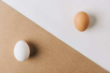 white egg laying on brown carton and brown egg on white background