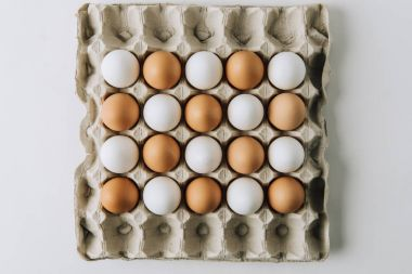 white and brown eggs laying in egg carton on white background